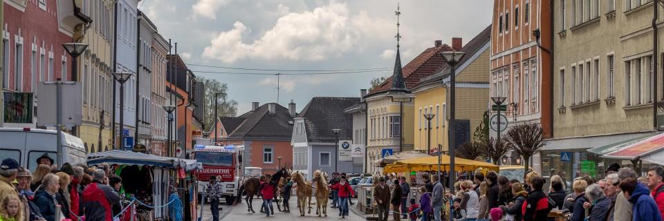 Pferdemarkt, Marktfest, Veranstaltungen & mehr.